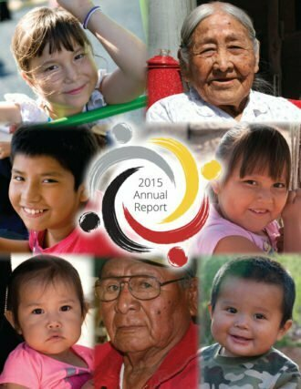 2015 Annual Report - cover image